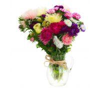 Astry do uprawy na kwiat cięty – mieszanka