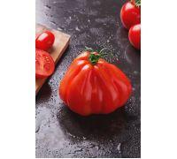 Pomidor – wysoki Red Pear