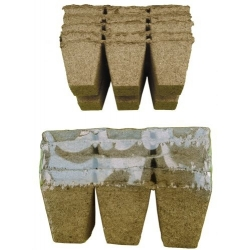 Square peat pots 6 x 6 cm - 36 pieces