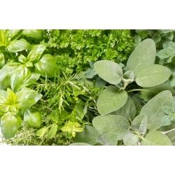 Aromatic Kitchen – Herb mix