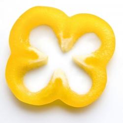 Sweet Pepper 'Marta Polka' seeds - Capsicum annuum - 80 seeds