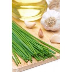 Garlic Chives seeds - Allium tuberosum - 300 seeds