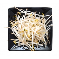 Mung Bean Sprouts - 840 seeds