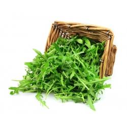 Рукола - 200 семена - Eruca vesicaria