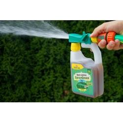 Thuja (arborvitae) mēslojums lietošanai gatavā laistīšanas kannā - Zielony Dom® - 950 ml -