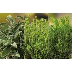 Maitsetaimed nahahoolduse seemnete jaoks - 3 in 1 -  - seemned