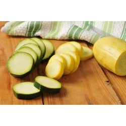 Courgette, Zucchini - a selection of varieties - Cucurbita pepo - 14 seeds