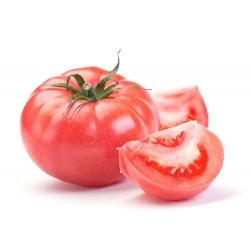 Tomato Favorite seeds - Lycopersicon esculentum - 263 seeds