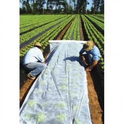 Bulu pegas (agrotextile) - perlindungan tanaman untuk tanaman sehat - 3,20 mx 10,00 m -
