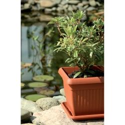 """Jardinera cuadrada para exteriores """"Terra"""" de 15 cm con plato - color terracota -"""