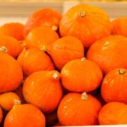 Squash Potimarron seeds - Cucurbita maxima - 15 seeds