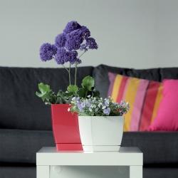 Négyzetes virágcserép csészealjjal - Coubi - 12 cm - Grafit -