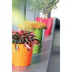 Round flower pot with saucer - Coubi - 10 cm - Olive