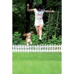 Garden fence - 40 cm x 3,5 m - Terracotta