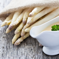 Asparagus seeds - Asparagus officinalis - 50 seeds