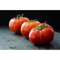 "Tomato ""Marmande"" - sweet and fleshy - 200 seeds"