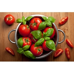 "Tall tomato ""Adam F1"" - 64 seeds"