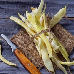 Harilik aeduba - Galopka - 100 seemned - Phaseolus vulgaris L.