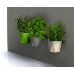 Modular thảo dược nồi - Heca - 12,5 cm - Kem -