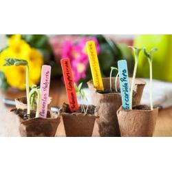 Kolorowe etykiety do oznaczania roślin 10 cm - 40 szt.
