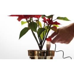 Zásobník na vodu pre izbové rastliny - IDOZ - 2 ks. -