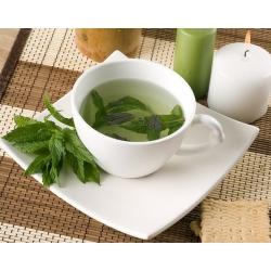Rohemünt - 1200 seemned - Mentha spicata