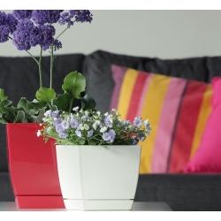 Štvorcový kvetináč s podšálkom - Coubi - 12 cm - Mlieko Káva -