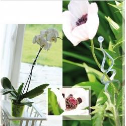 Цветочный горшок для орхидеи - Coubi DSTO - 12,5 см - зеленый -