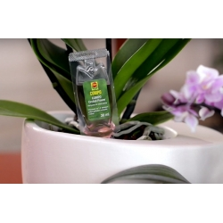 Orchid Power Nutrient - Compo® - 1 x 30 ml -