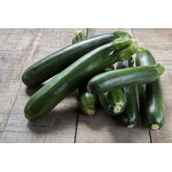 "Zucchini ""Nephrite F1"" - 21 seeds"