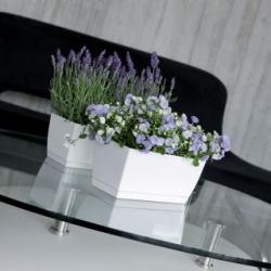 Rectangular flower pot with saucer - Coubi - 29 x 14 cm - Graphite