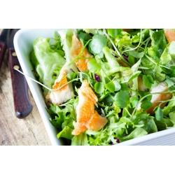 Baby Leaf - Italian lettuce mix