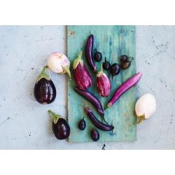 Eggplant, Aubergine - variety mix - 110 seeds