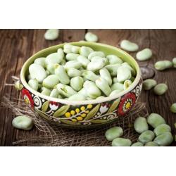 "Broad bean ""White Hangdown"""