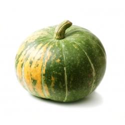 "Giant hull-less squash ""Olga"" - 15 seeds"