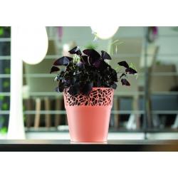 Ümar lillepott pitsiga - 14,5 cm - Naturo - valge -