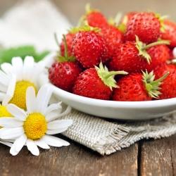 """Strawberi liar """"Rujana"""" strawberi hutan, strawberi Alpine, Carpathian Strawberry, strawberi Eropah, fraisier des bois - 640 biji - Fragaria vesca - benih"""