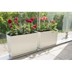 """Jardinera / jardinera """"Werbena"""" - 19 x 56 cm - blanco crema -"""