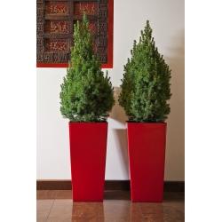 """""""Finezja"""" penanam tinggi persegi dengan insert - 19 cm - merah -"""