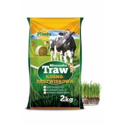 اختيار عشب القش والمراعي - مرج بدون أنواع Fabacecae - B2 - 2 كجم -  - ابذرة