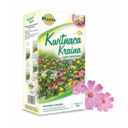 Land of Blooms - Fragrant Corner - a selection of intensely and pleasantly smelling flowers - 200 g