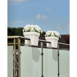"""Lobelia"" railing-mounted planter - 29 cm - creamy-white"