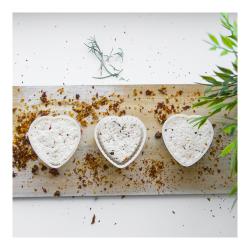 قالب پنیر به شکل قلب برای 400 گرم پنیر -
