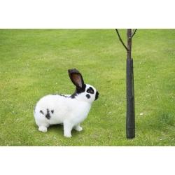 Tutupan pohon muda lebar - 100 cm - 3 buah -