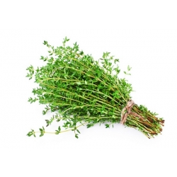 """Home Garden - thyme """"Sun"""" - for indoor and balcony cultivation"""