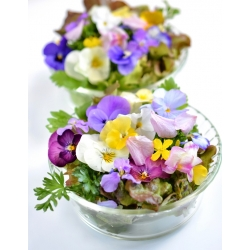 Variety mix of plants with edible flowers