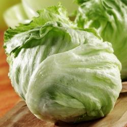 "کاهو یخ زده ""ملکه تابستان"" - انواع زودرس - SEED TAPE - Lactuca sativa L.  - دانه"