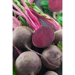 """Beetroot """"Red Ball"""" - TREATED SEEDS - 500 seeds"""
