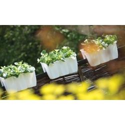 """Caja de balcón montada en barandilla """"Crown"""" - blanco - 40 cm -"""