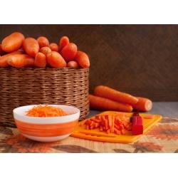 "Carrot ""Karotina"" - early, sweet variety with high carotene content - 4250 seeds"